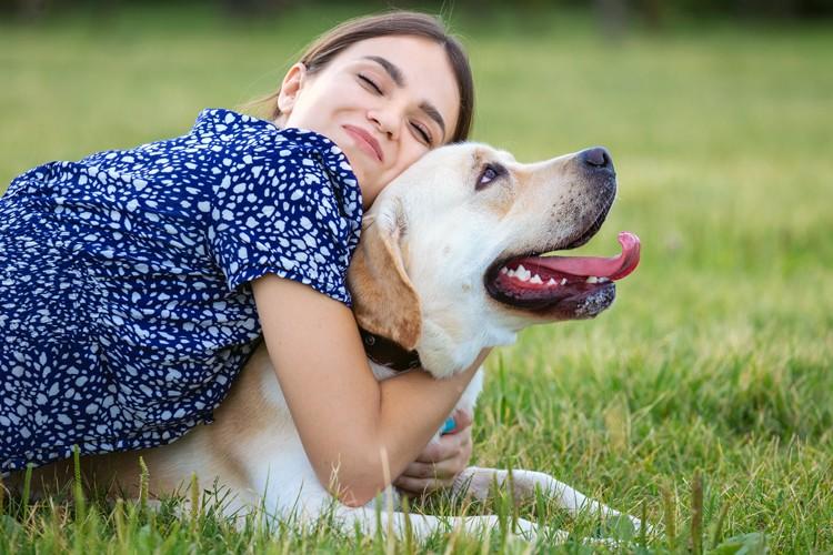 Assurer son chien ou non pourquoi cela vaut la peine
