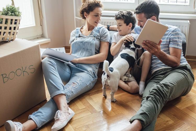 Assurance familiale pour votre chien